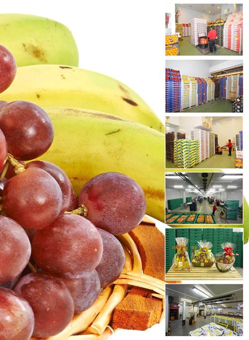 Quienes somos - Cestas fruta